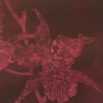 Detail: Oncidium I