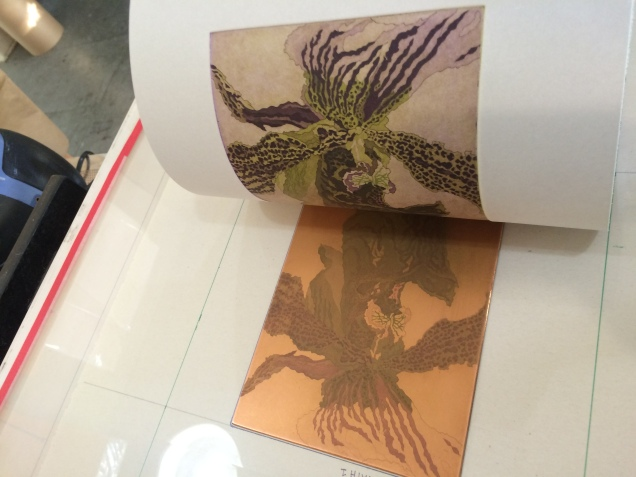 A second layer of violet is printed over the initial green print.